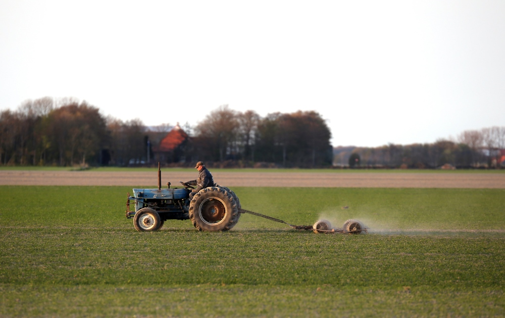 A farmer plows his fields for future tulips and lilies behind the North Sea dunes, between the cities of Leiden and Den Helder.