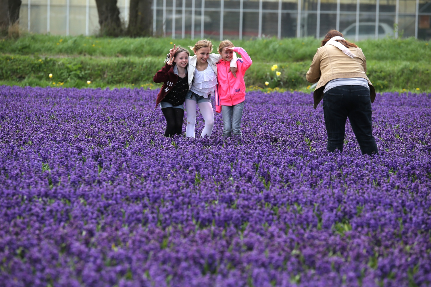 A group of young tourists pauses for photographs in a field of flowers near Den Helder, Nord-Holland. Tourism is an important economic sector in the Netherlands. The country receives some 10 million foreign visitors every year.