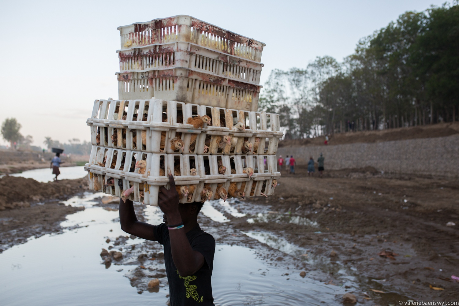 Art and Documentary Photography - Loading Ouanaminthe-4.jpg