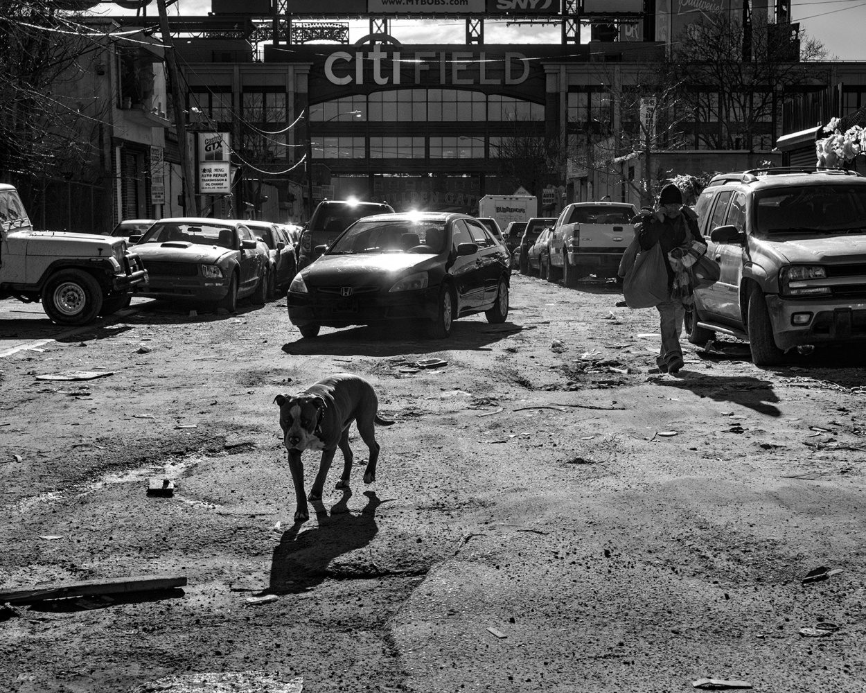 Art and Documentary Photography - Loading Junk_Yard_Dog.jpg