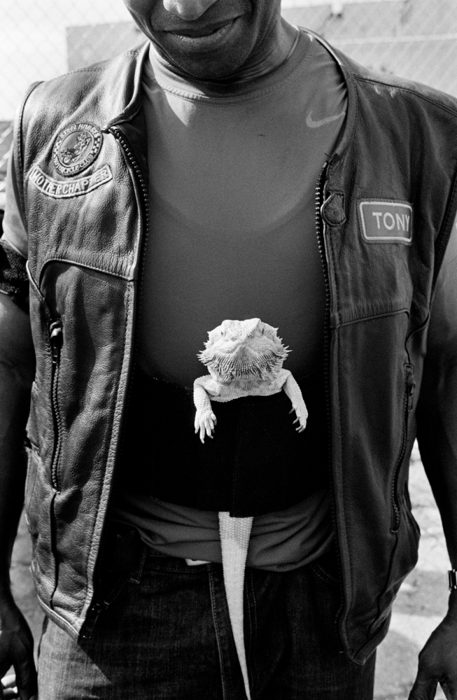 Tony of Steel Horses MC & Lizzy the bearded dragon about to ride out, The Bronx, 2016