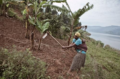 Pregnants daylife (Uganda)
