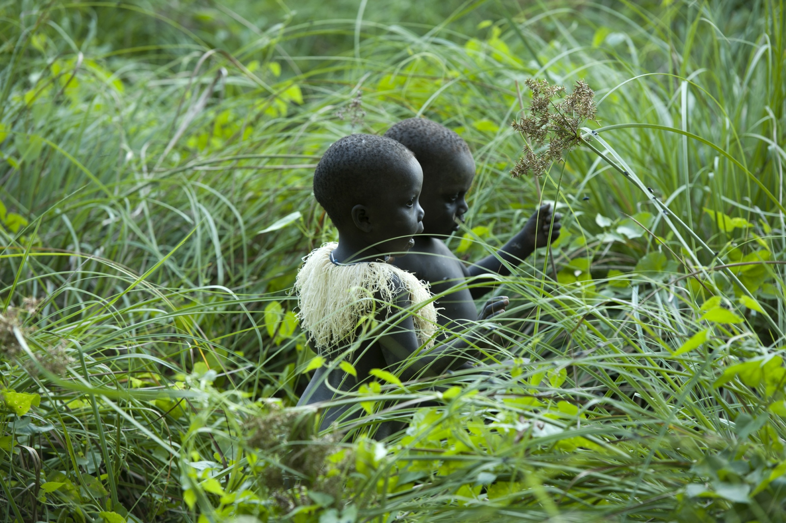 Art and Documentary Photography - Loading jarawa_beilvert_children_palying_in_the_tall_grass.jpg