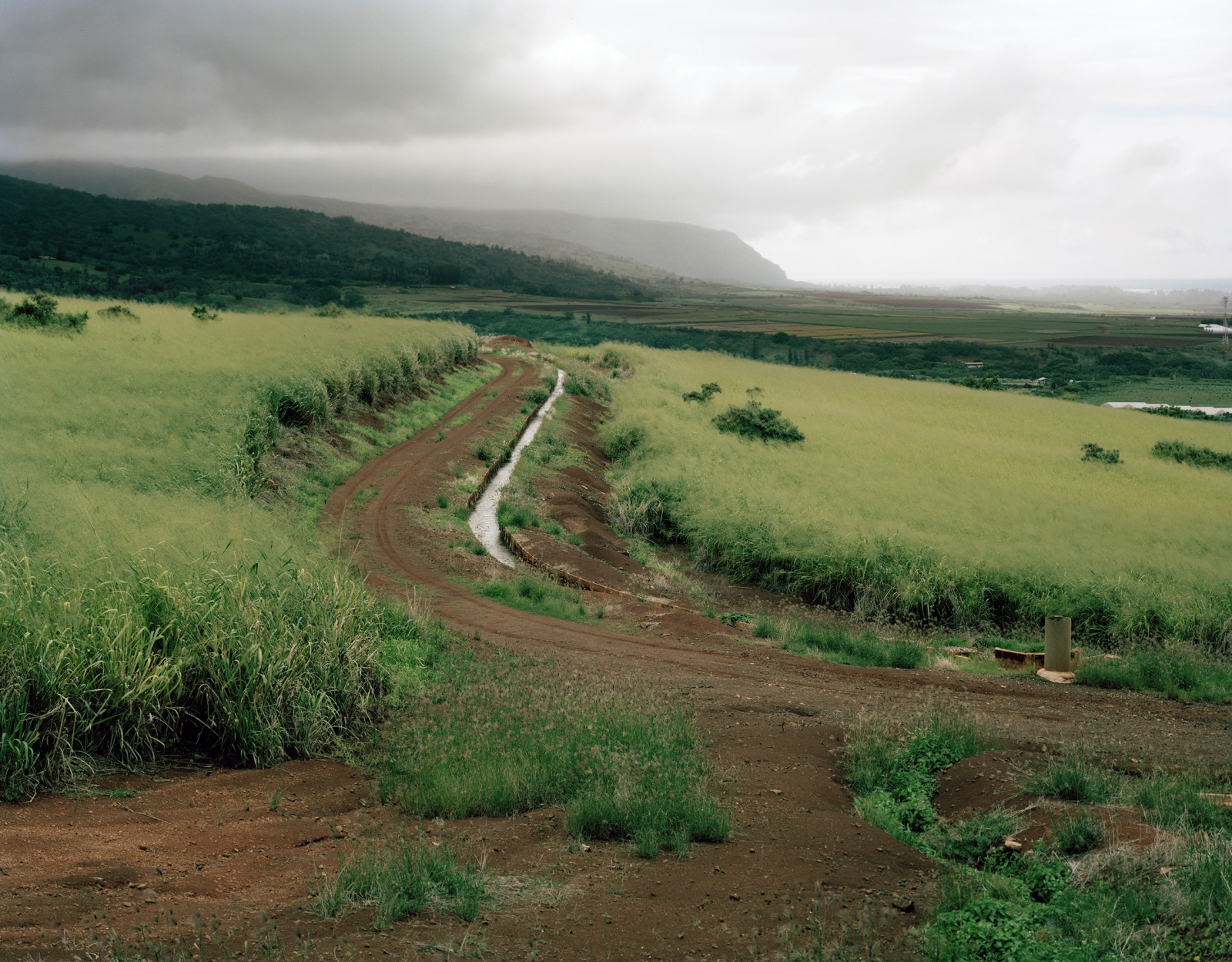 Along Highway 830, Hawaii 2014