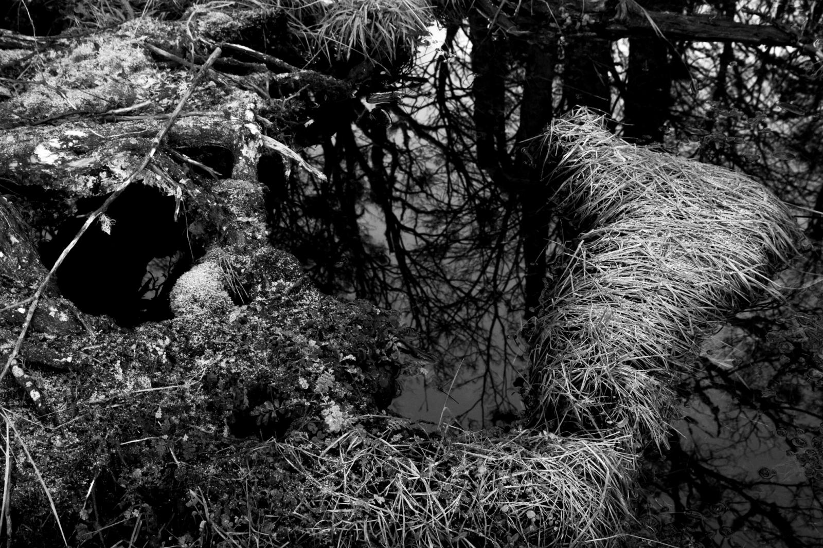 Art and Documentary Photography - Loading fb-7.jpg