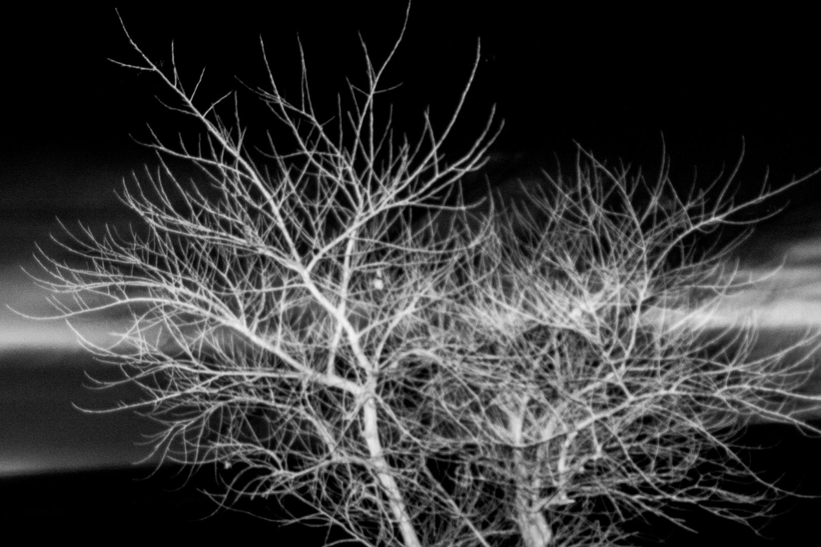 Art and Documentary Photography - Loading fb-12.jpg