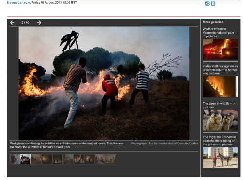 Portuguese wildfires in The Guardian. 30-08-2013. View  here