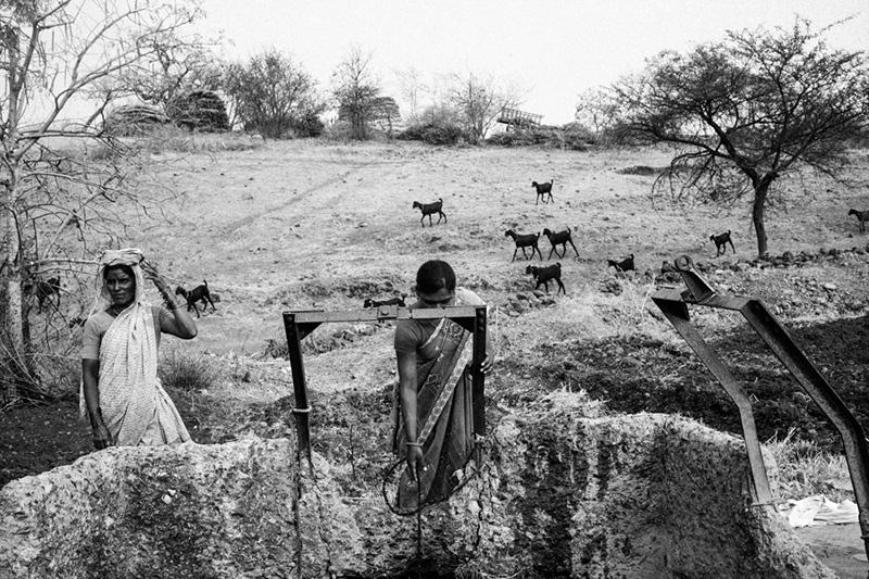 Photography image - Loading Marathwada_Drought_03.jpg