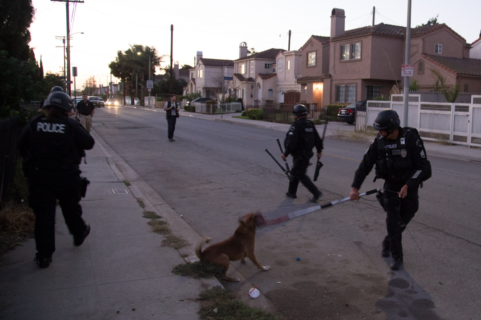 Officers with the LAPD Internet Crimes Against Children Task Force control a dog while executing a warrant in the Watts neighborhood of Los Angeles.