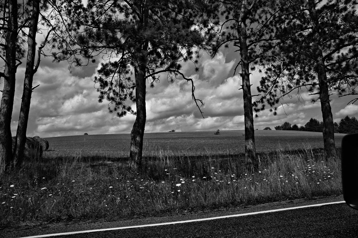 Art and Documentary Photography - Loading _TP_7178-Edit.jpg