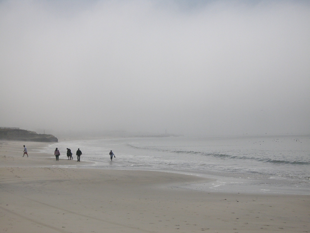 Photography image - Loading foggy_beach2.jpg