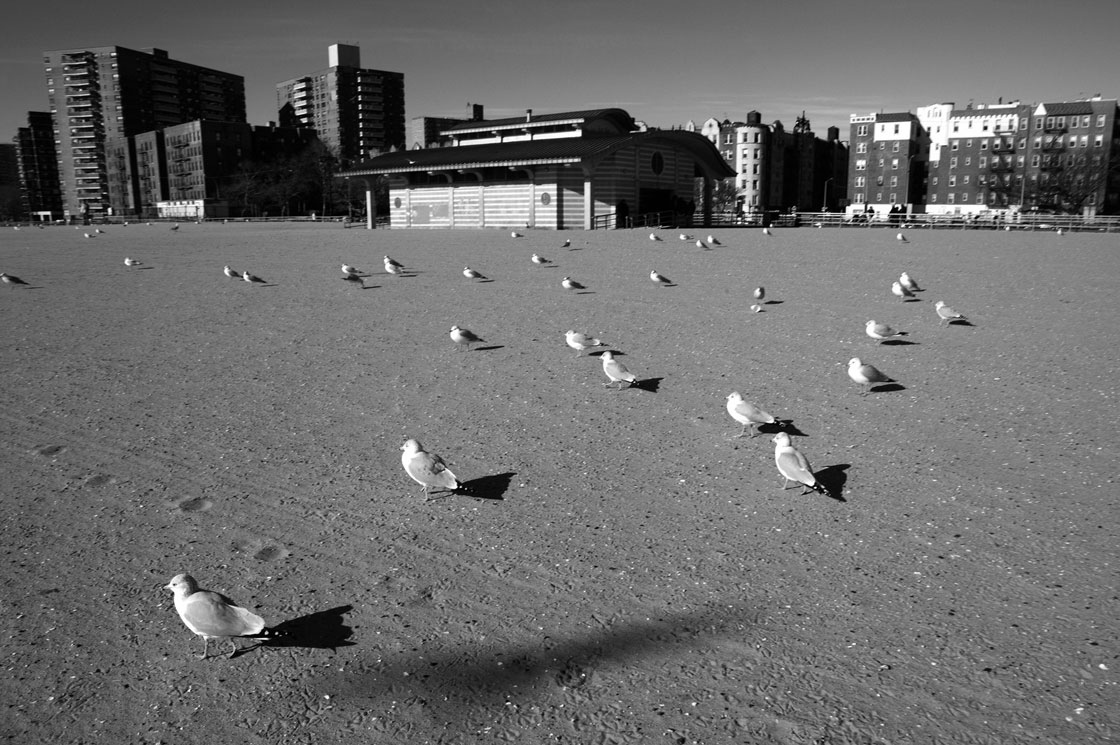 Art and Documentary Photography - Loading 0020_08-New-York-Brighton-beach.jpg