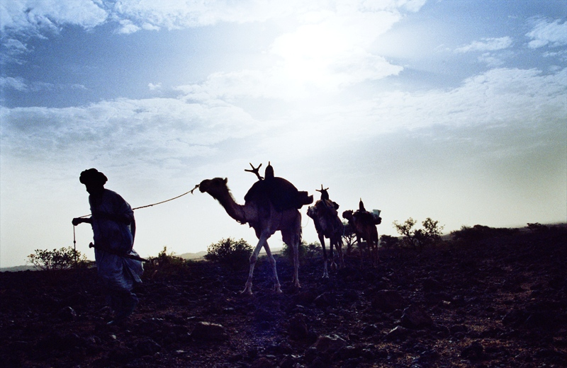Traveling by foot and camel through the Air Massif Mountain range to deliver the journal to remote Tuareg camps and villages. Bagzan, Niger 2005