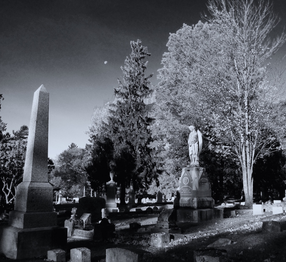 Photography image - Loading cemetary.jpg