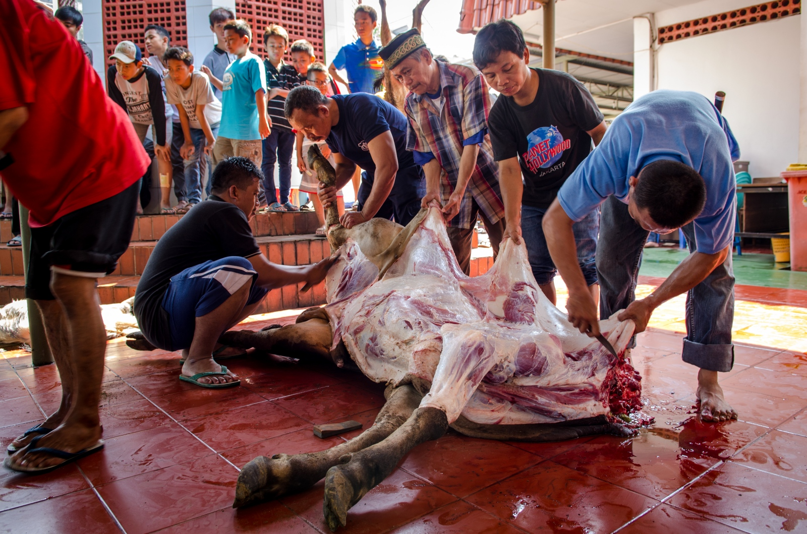 During a sacrifice, no part of the animal is wasted.  Butchering is done tactfully as they work to maintain the honor of the sacred creature.  The only parts of a sacrificed animal that will not be eaten are genitals, bladder, gall bladder and flowing blood.