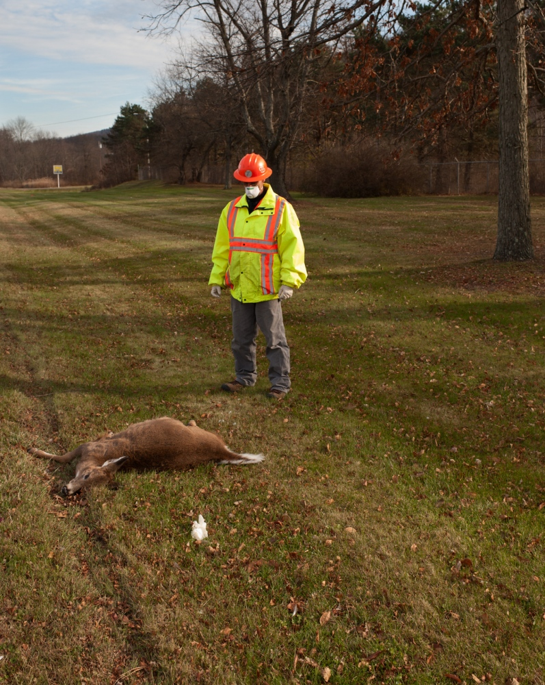 .Daily rounds D.O.T. workers are at high risk of contracting lyme disease from their constant exposure to deer.