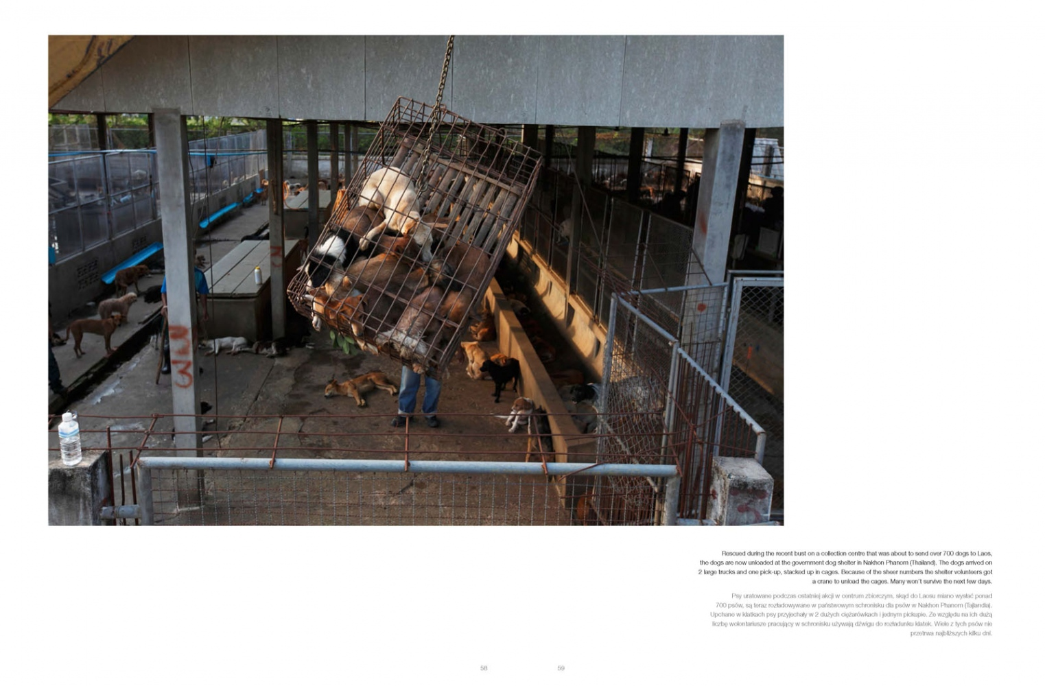 Art and Documentary Photography - Loading doc__photo_magazine_issue023_luke_duggleby_Page_13.jpg