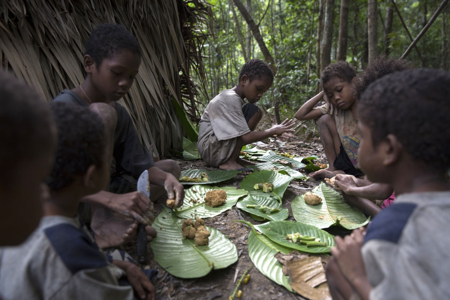 Maniq children use leaves and other products of the forest to play a game. Satun - September 2016