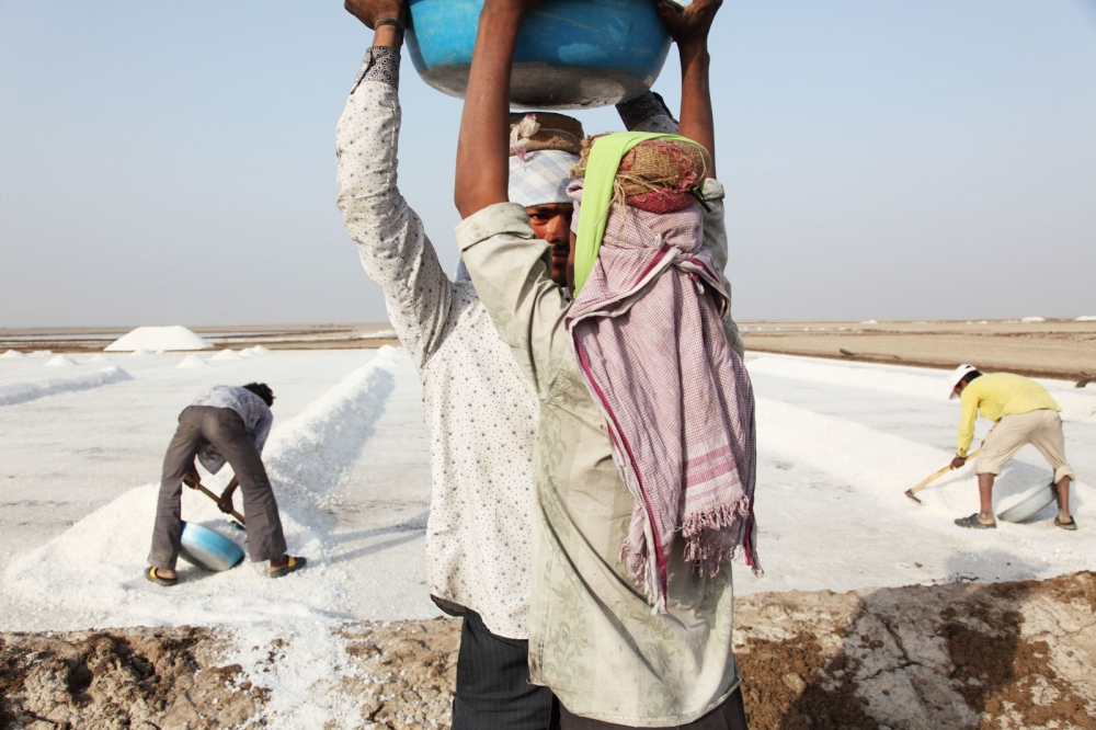 Salt workers collect freshly made salt from large pans on the Little Rann of Kutch. Gujarat, India.