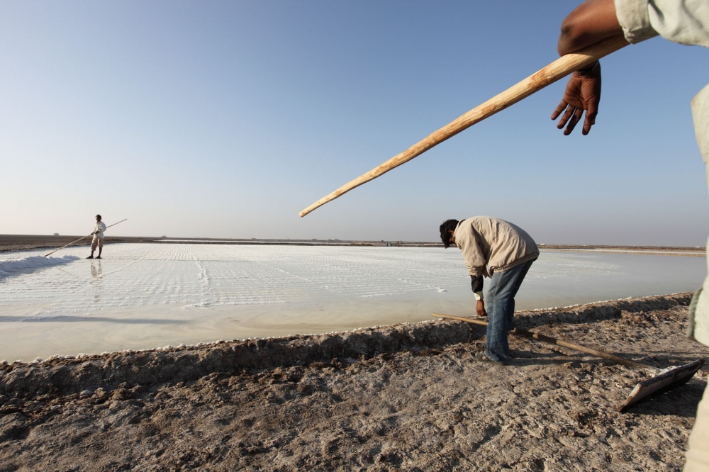 Salt workers work on a large salt pan in the Little Rann of Kutch. Gujurat, India.