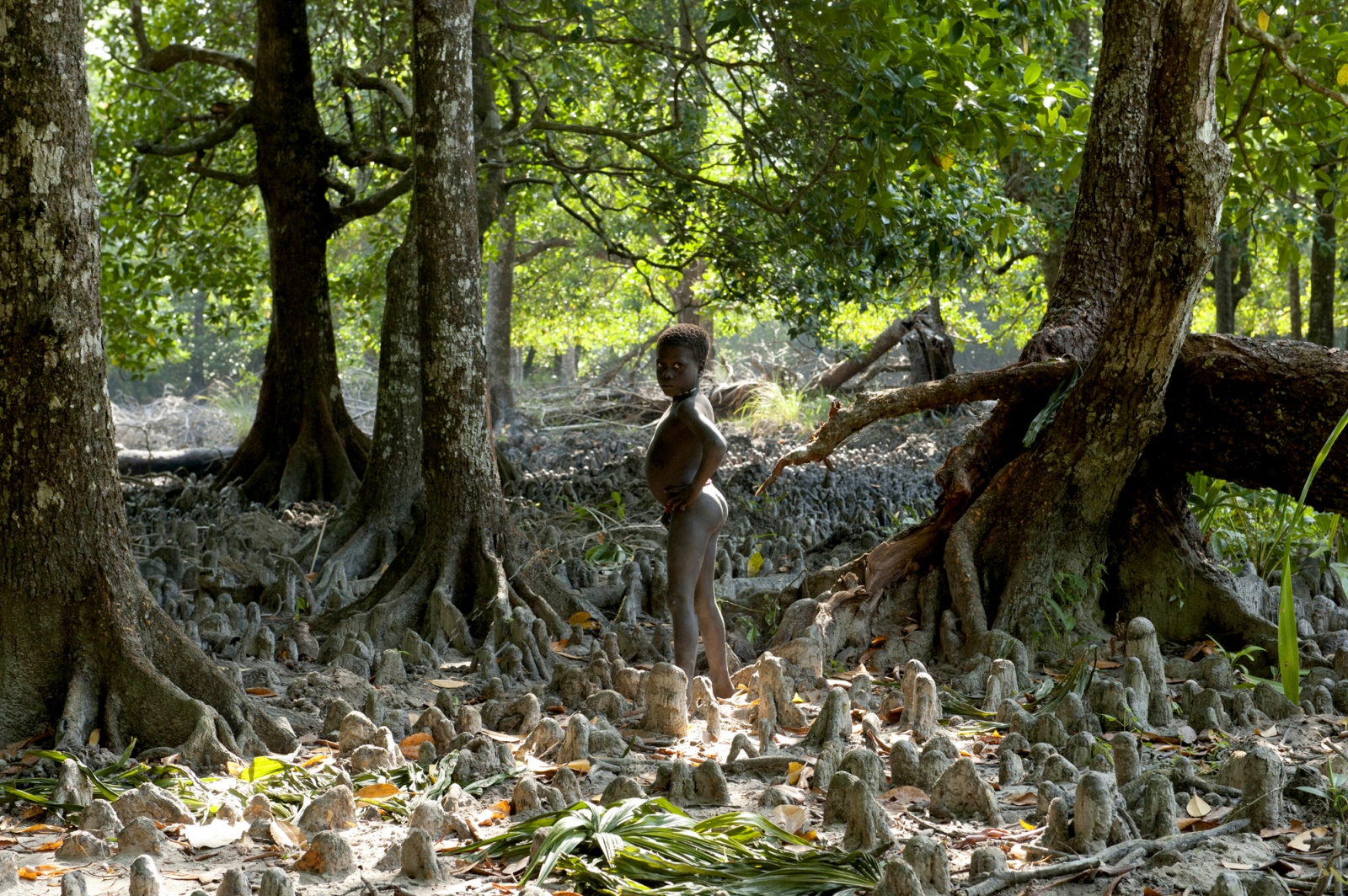 Art and Documentary Photography - Loading jarawa_beilvert_boy_pissing_in_the_jungle.jpg