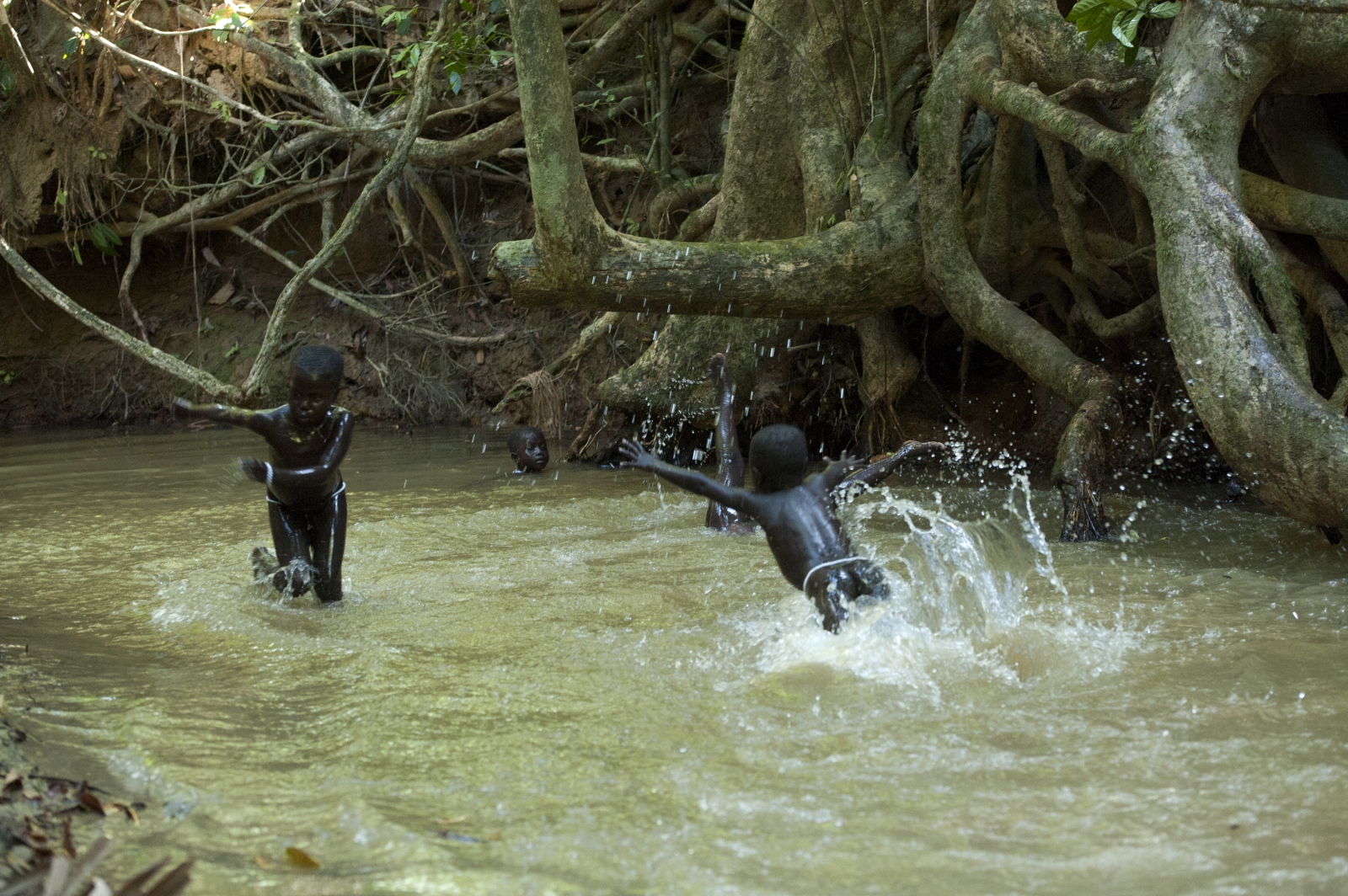 Art and Documentary Photography - Loading jarawa_beilvert__playing_in_the_jungle_water.jpg