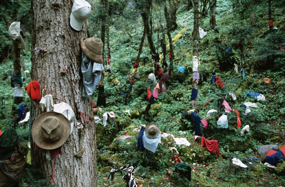 Offerings of cloths and personal items by Tibetans to the spirits of the forest.Yunnan Province, China