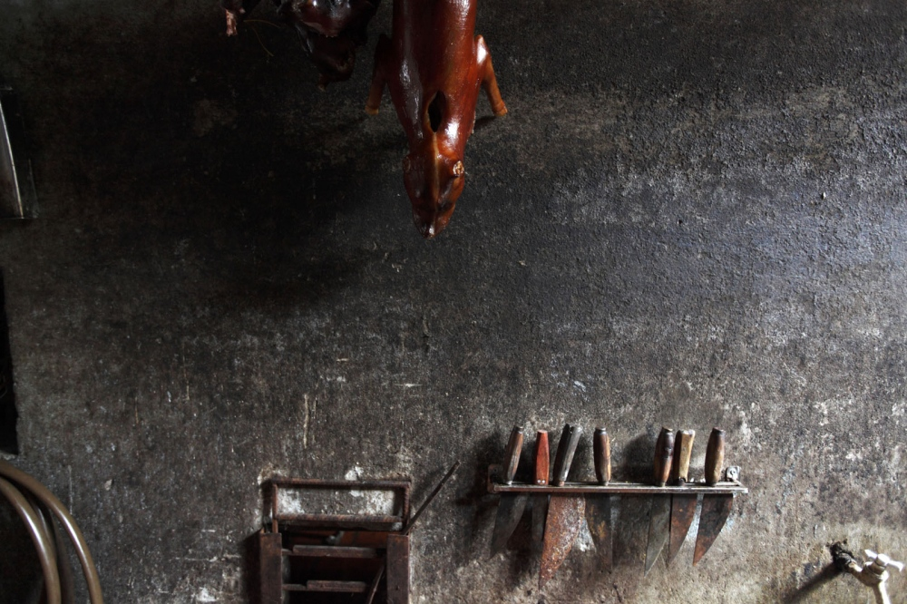 A dead dog ready to sell for meat hangs on the wall of a slaughter house. Hanoi, Vietnam