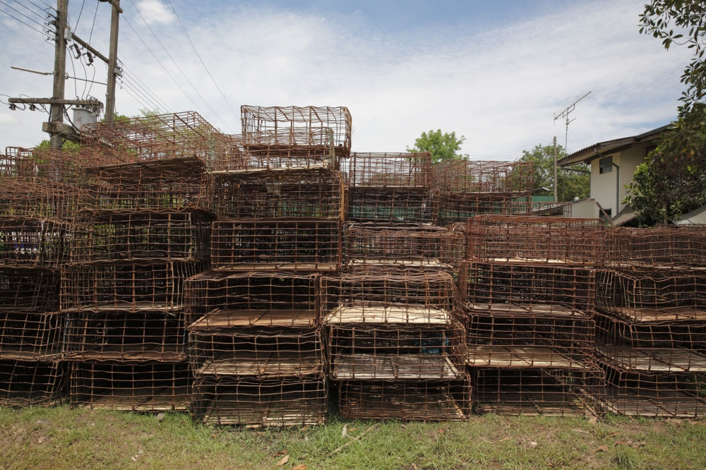 At Nakhon Phanom dog shelter, currently home to almost 3000 rescued dogs, old cages used for smuggling are stacked up. Nakhon Phanom, Thailand