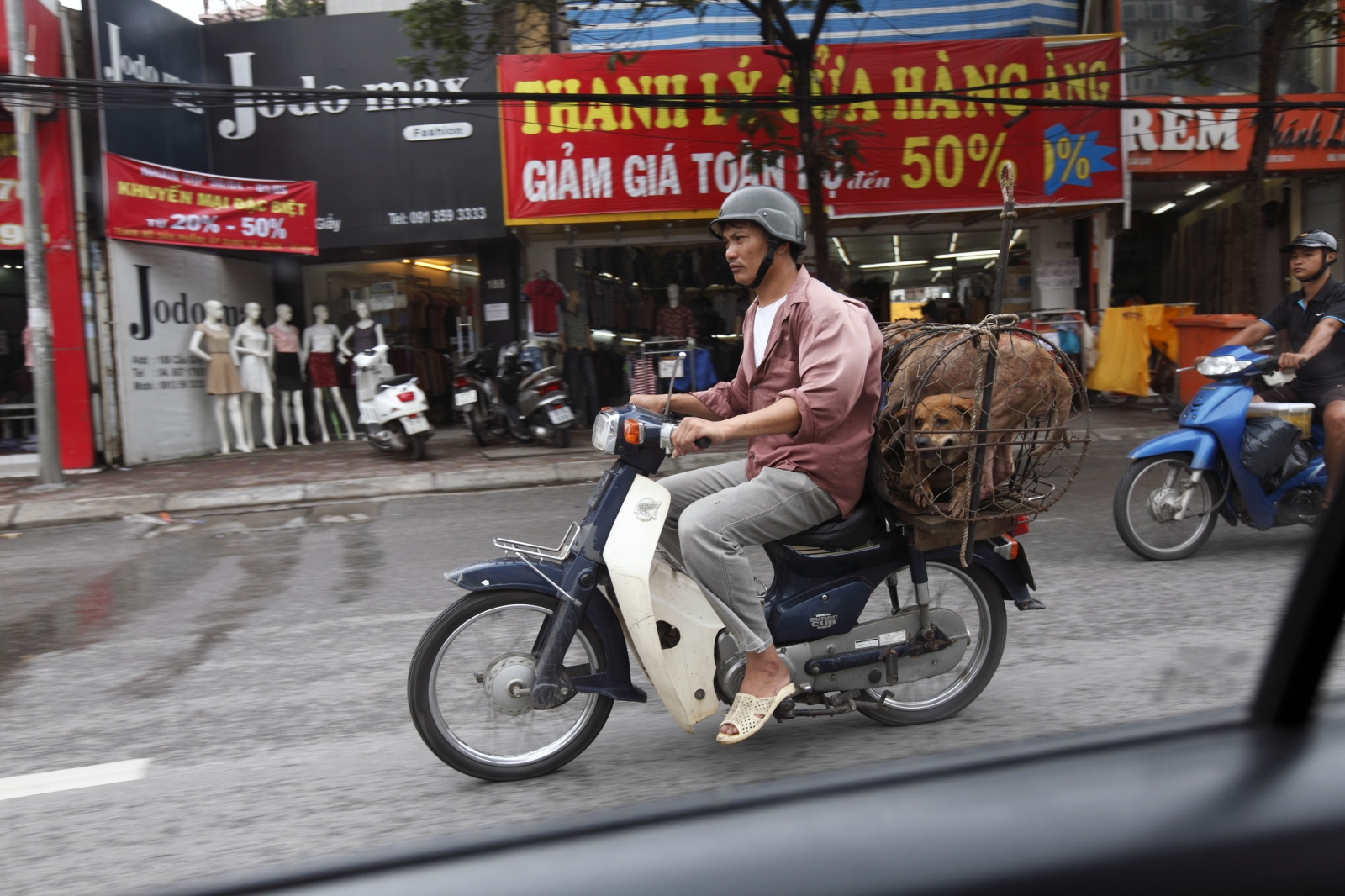 Art and Documentary Photography - Loading Dog_Meat16.JPG