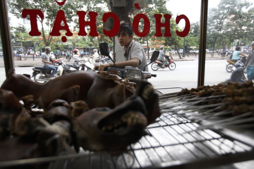 At a dog meat restaurant in Hanoi, dog meat is sold for around US$7 per kilo. Hanoi, Vietnam
