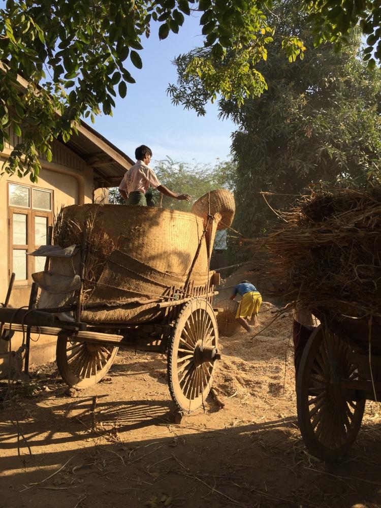 Art and Documentary Photography - Loading 20150209_Burma_2015_0094.jpg