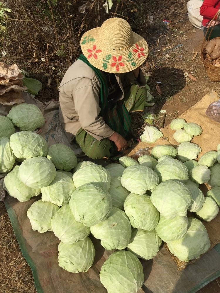 Art and Documentary Photography - Loading 20150212_Burma_2015_0137.jpg