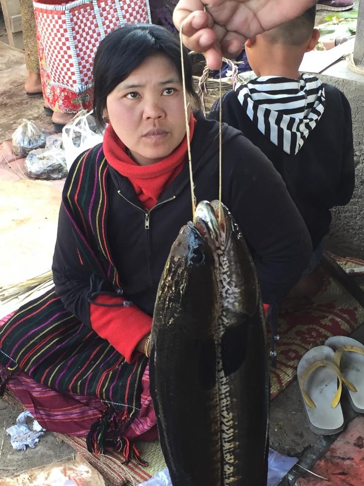Art and Documentary Photography - Loading 20150214_Burma_2015_0196.jpg