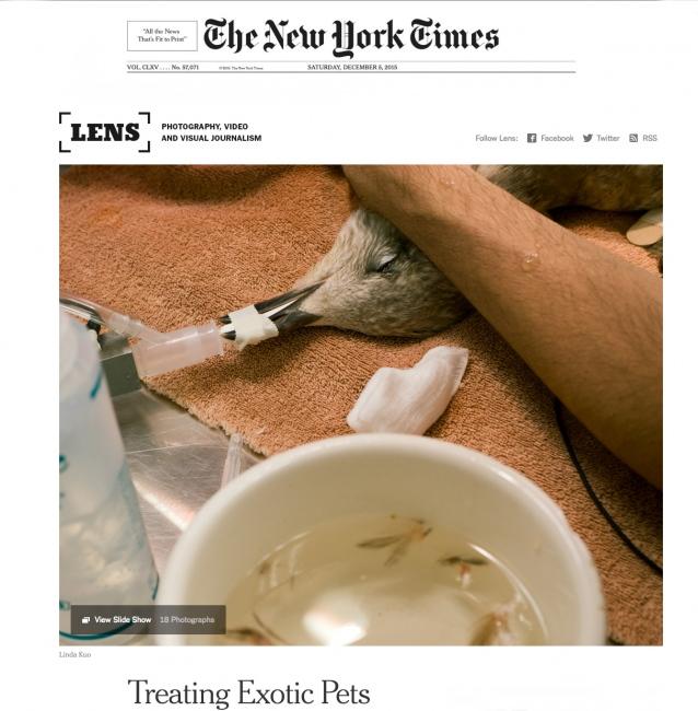 Photography image - Loading NYT_web.jpg