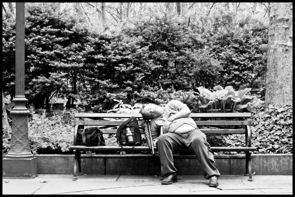 Art and Documentary Photography - Loading Bryant Park denizen.jpg