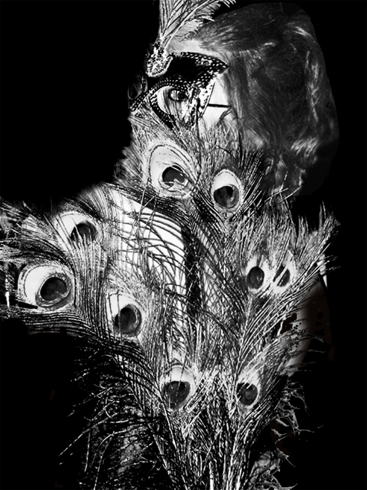 Art and Documentary Photography - Loading feathers2.jpg