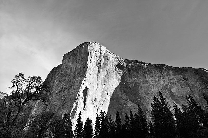 Art and Documentary Photography - Loading 150419-0064_YOSEMITE_NATIONAL_PARK_CALIFORNIA.jpg