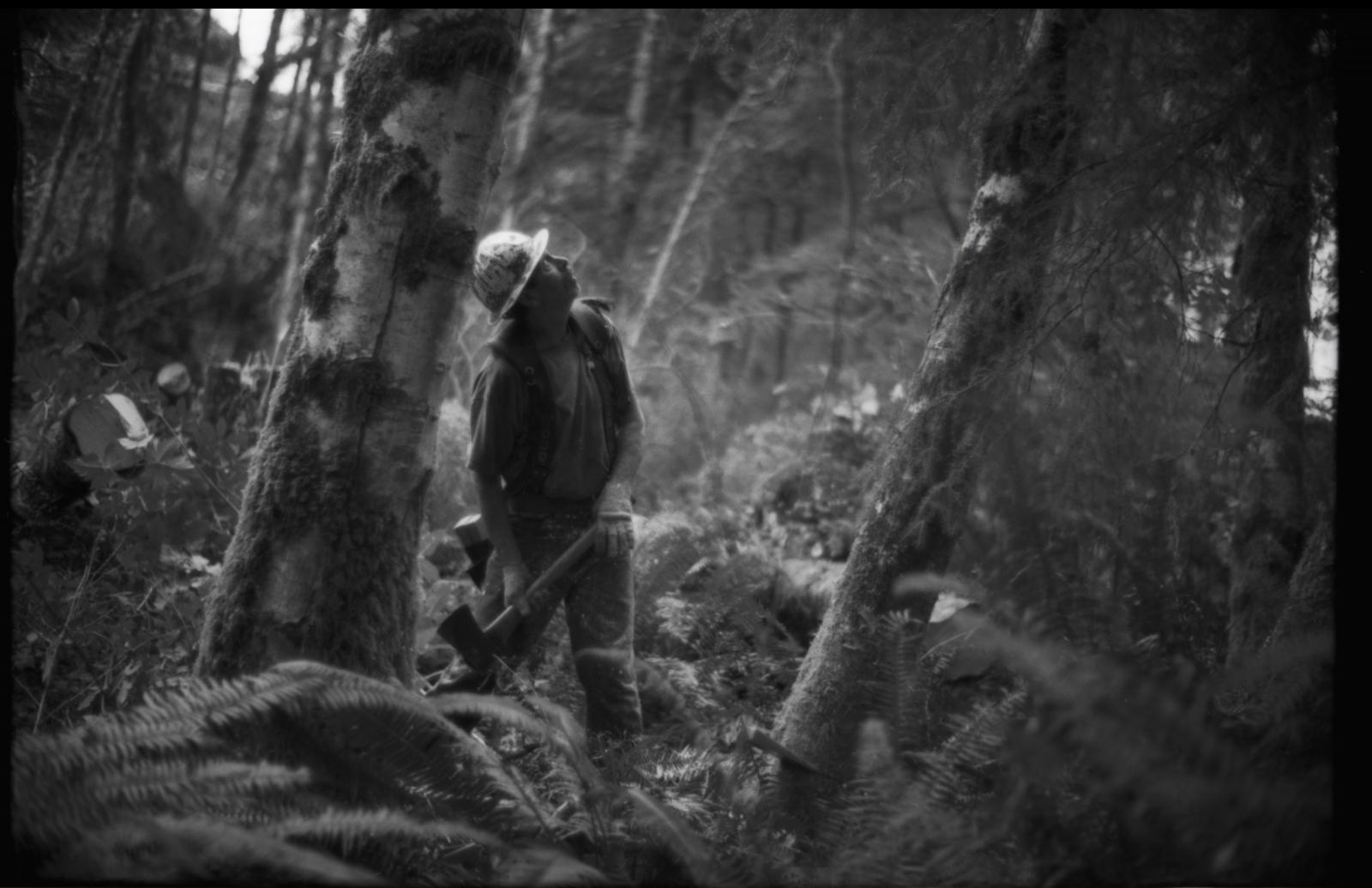 Art and Documentary Photography - Loading Oegon.Logging.25.jpg