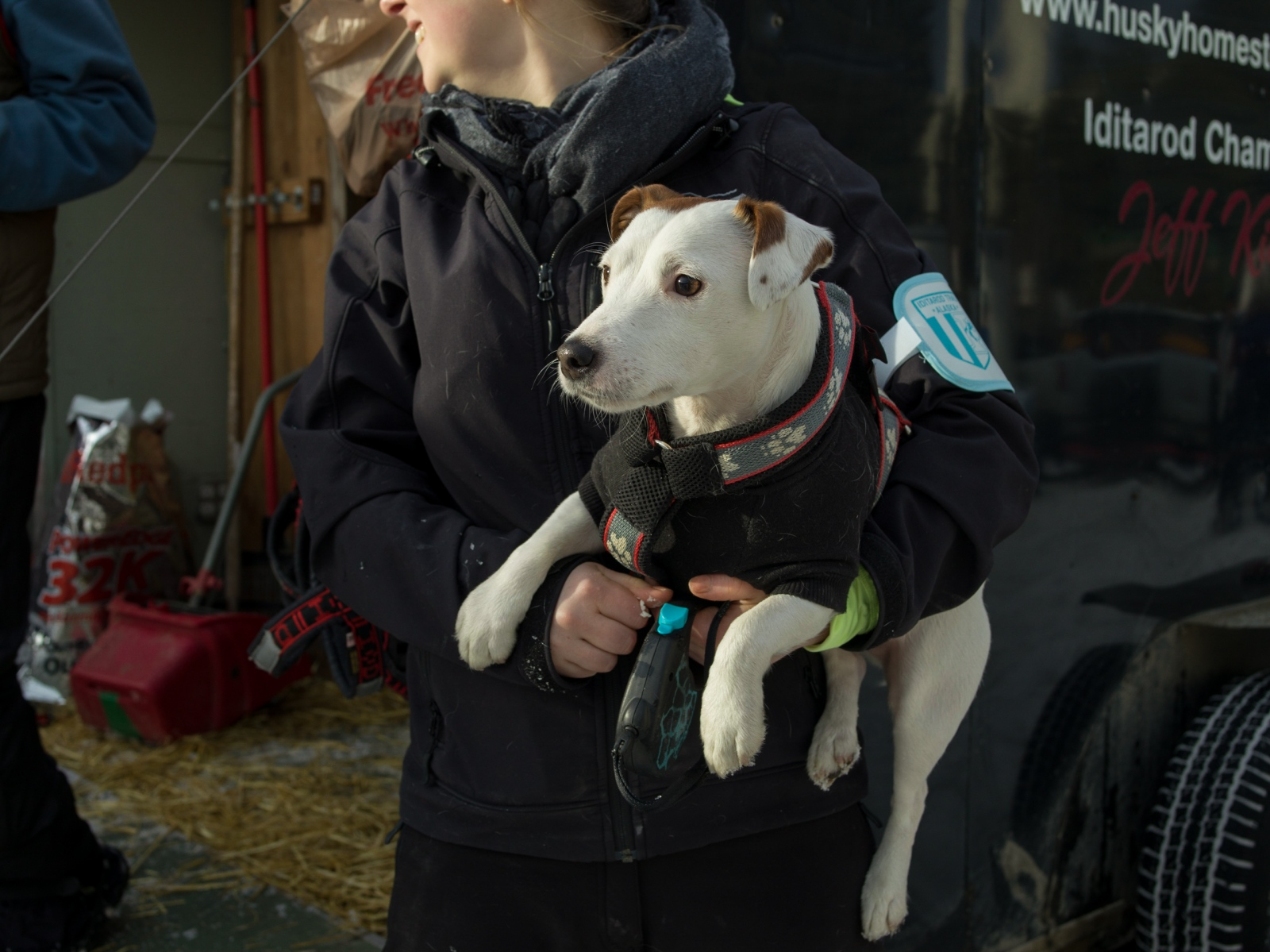 Ellen King laughs with her father, 4-time Iditarod champion Jeff King, while holding one of Jeff King's puppies at the ceremonial Iditarod start in Anchorage on March 5, 2016.