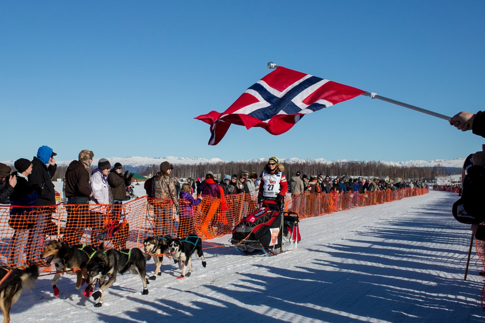 A fan waves a Norwegian flag as Sigrid Ekran of Norway mushes past during the 2016 Iditarod restart in Willow Alaska on March 6, 2016.