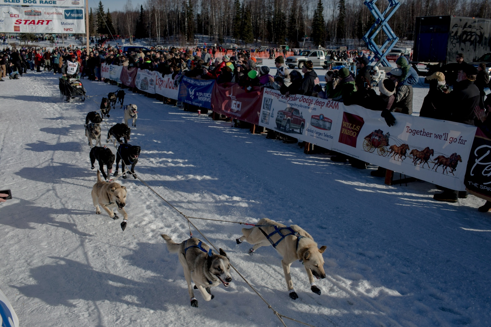 Martin Buser mushes out on the trail in Willow at the 2016 Iditarod restart on March 6, 2016.