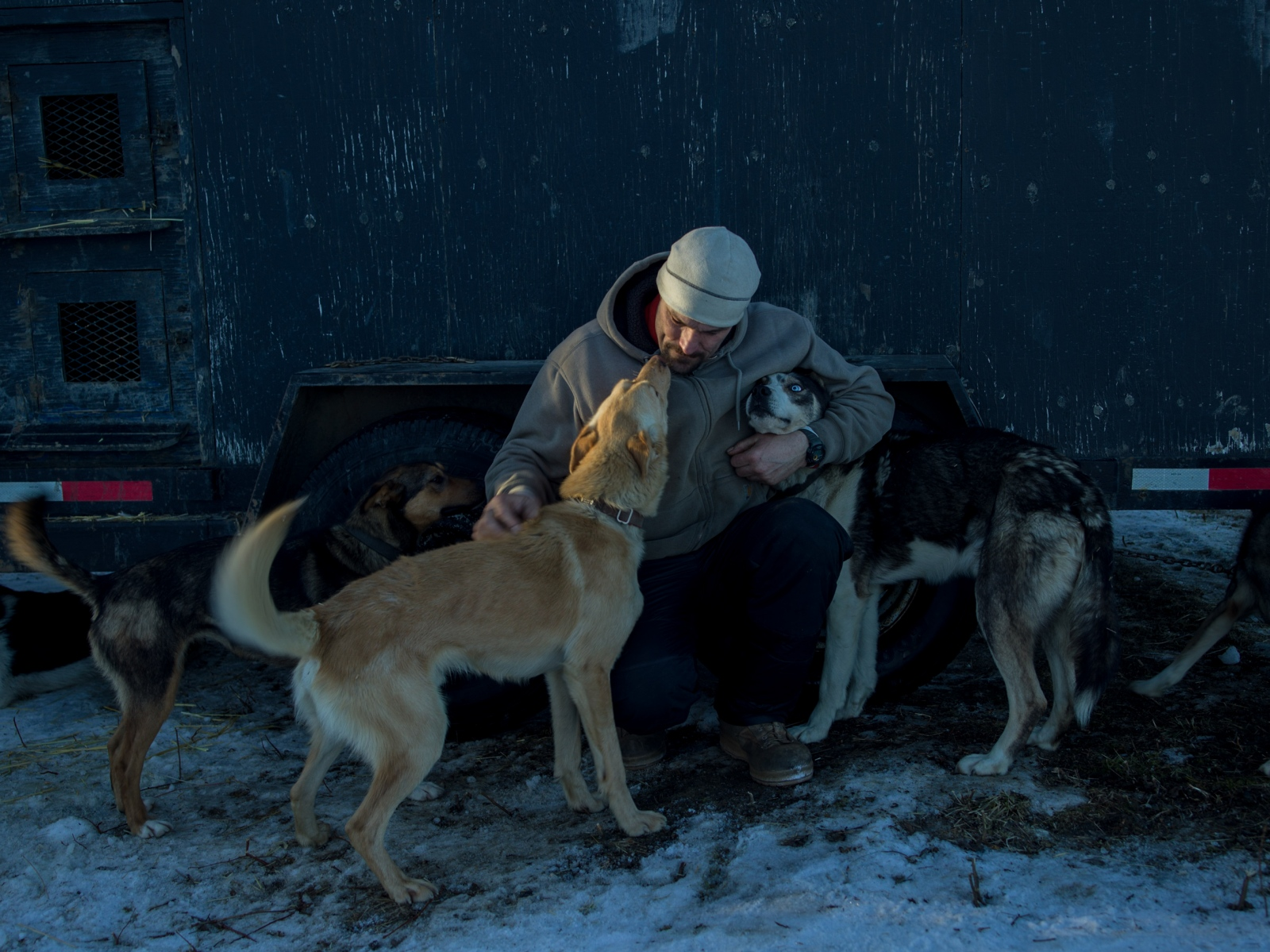 Sebastien Vergnaud with his dogs at the 2016 Iditarod restart in Willow Alaska on March 6, 2016. Vergnaud, originally from France, is currently living in the Yukon, and although he says his dogs, most of whom are about one year old, are too young to race this year, he is hoping to race the Iditarod next year.