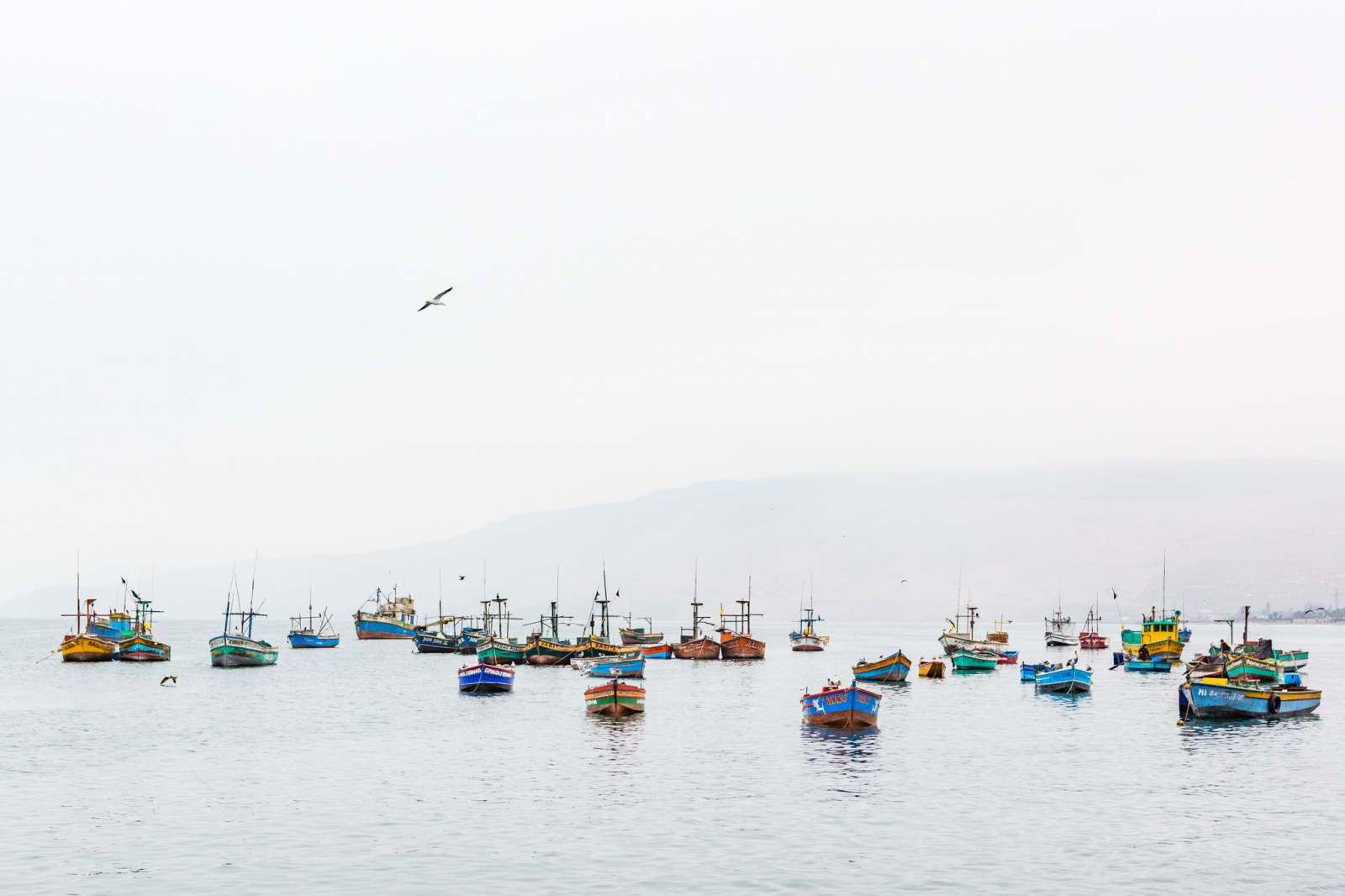 Art and Documentary Photography - Loading Fisheries010.jpg