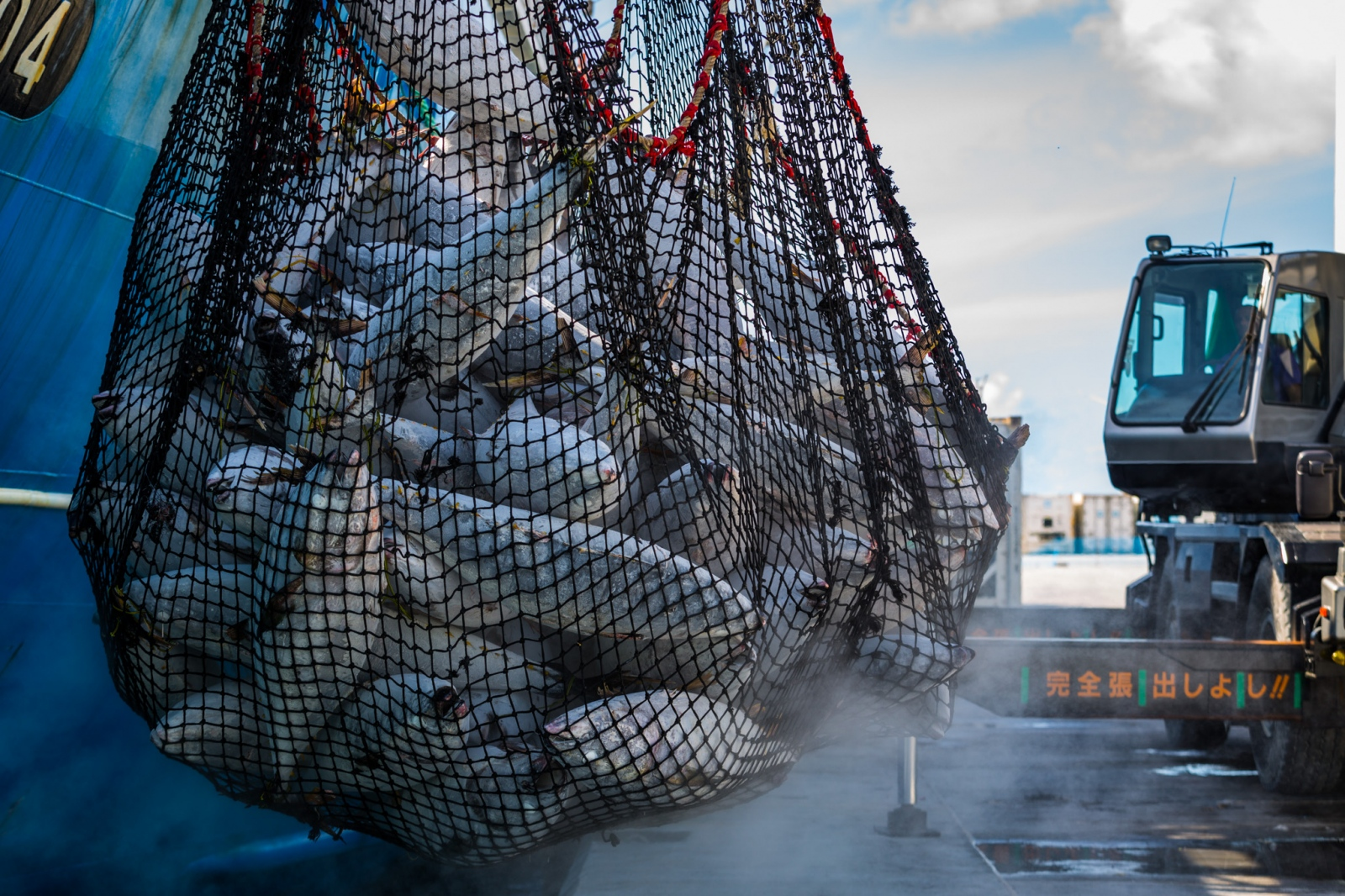 Art and Documentary Photography - Loading Fisheries016.jpg