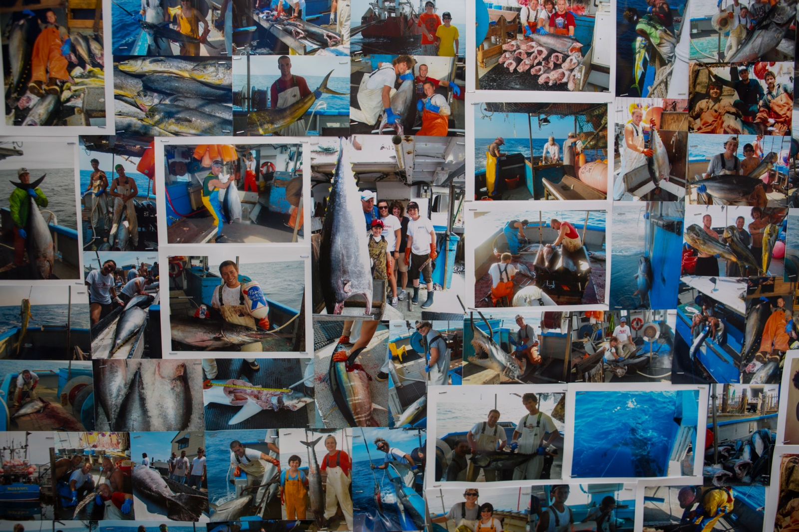 Art and Documentary Photography - Loading Fisheries026.jpg