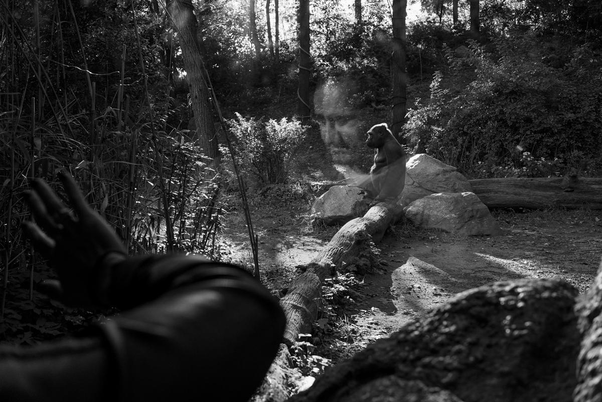 Art and Documentary Photography - Loading masculinity_nytportfolioreview012.jpg