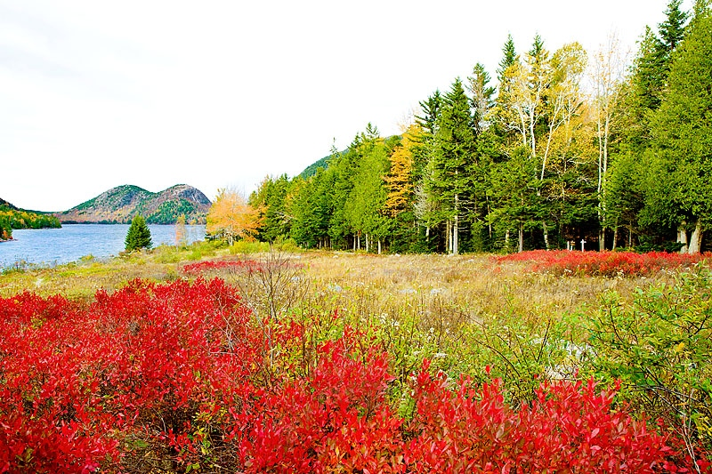 Art and Documentary Photography - Loading 141019-0050_JORDAN_POND_AND_THE_BUBBLES_MOUNTAINS_ACADIA_NATIONAL_PARK_MAINE.jpg