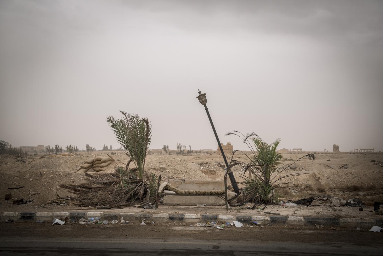 Art and Documentary Photography - Loading Cio___che_resta_di_Palmyra_03.jpg