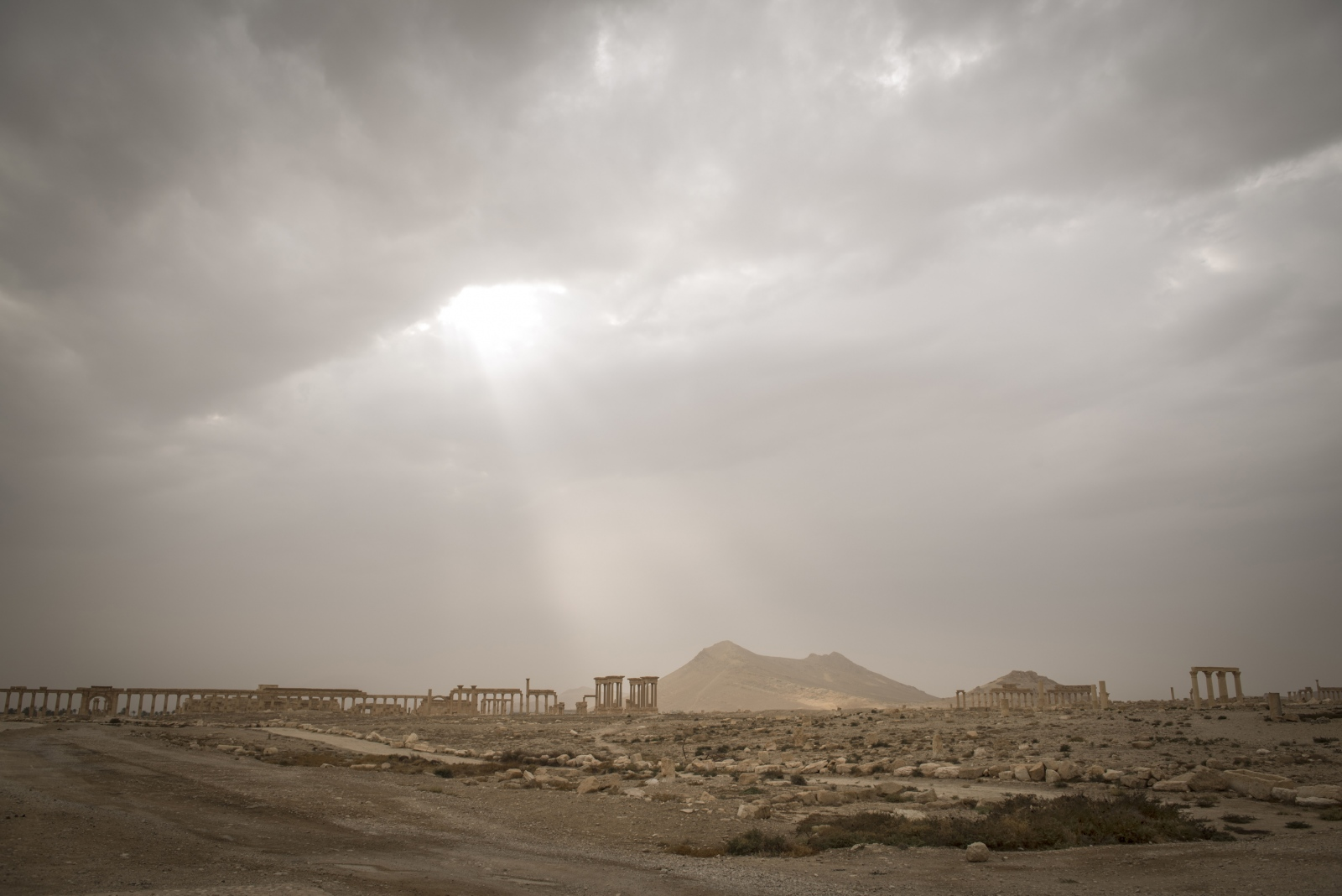 Art and Documentary Photography - Loading Cio___che_resta_di_Palmyra_23.jpg